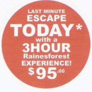rainresforest massage